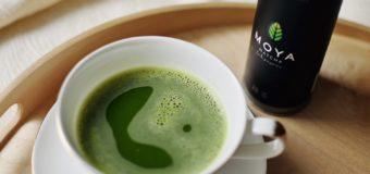 Co warto wiedzieć o herbacie matcha?